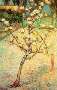 Arles (1888-1889) Blossoming Pear Tree