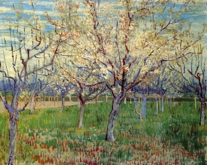 Vincent van Gogh orchard-with-blossoming-apricot-trees-1888